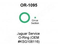 O Ring OR-1095